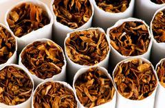 Close up of smoking cigarettes as antismoking concept - stock photo