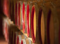 Barrels of wine in cellar: red, chianti, wine producing, keg, cask Stock Photos