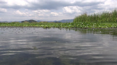 Lakes, Wetlands, Freshwater, Bodies of Water, Natural Stock Footage