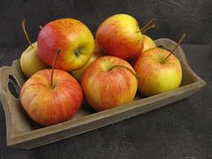 Small Tenroy Gala Royal apples - stock photo