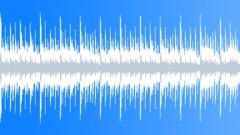 Bayou Baby - Loop No Lead 18 sec Stock Music