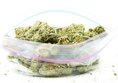 marijuana and cannabis, white background - stock photo