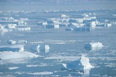 Antarctica Petersen Bank icebergs Stock Photos