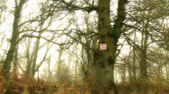 Sign in woods = Keep Out (Wide) mist Stock Footage