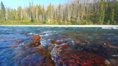 Flathead River of Montana Stock Footage