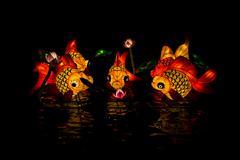 Lantern fish at lantern festival Stock Photos