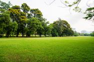 Stock Photo of green grass field in big city park