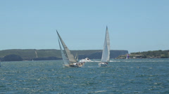 Sail boats and yachts in sydney harbour, australia Stock Footage