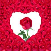beautiful red rose in heart of red rose useful for some valentine concept - stock photo