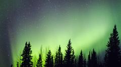 Alaska, Aurora Borealis Explodes Through Trees #7 - stock footage
