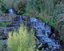 Small multi-tiered waterfall surrounded by forest, Hogsback - Forest Stock Footage
