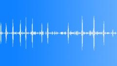 European Forest Birds Ambience 03 Sound Effect