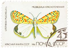 Stamp printed in ussr, shows butterfly utetheisa pretty utetheisa pulchella , Stock Photos