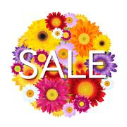 Colorful gerbers flowers ball sale Stock Illustration