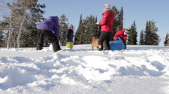 A family and dog play and wrestle in the snow Stock Footage