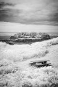 Picnic table on oregon coast Stock Photos
