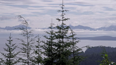Fog sits on the ocean in a bay in Icy Straight, AK with mountains in the Stock Footage