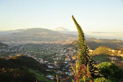 View of the island of Tenerife El Teide to Stock Photos