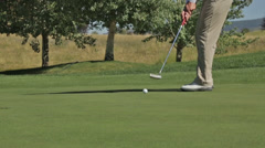 A golfer putts at an Idaho golf course Stock Footage