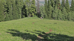 A group of mountain bikers bike across a field in Idaho with the Teton Mountains Stock Footage