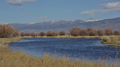 Idaho river with mountains in background Stock Footage