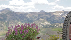 Mountain bikers take a break and look at the view of the Teton Mountains in Stock Footage