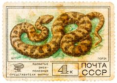 stamp sheet printed in russia shows viper, collection of protected fauna of t - stock photo