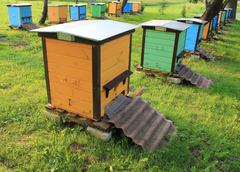 beehives in the garden - stock photo