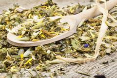 Curative natural herbal tea Stock Photos
