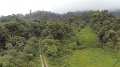 Descending to a track running through montane rainforest Stock Footage