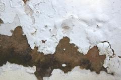 rising damp and peeling paint on exterior wall - stock photo