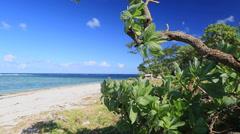 Tropical island Getaway Stock Footage