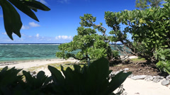 Australian Island Landscape Stock Footage