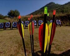 Close up of arrow tails, one is picked up Stock Footage