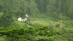 Home in the rainforest Stock Footage
