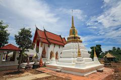 wat chimplee at koh kred in nonthaburi - stock photo