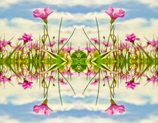 Creative photo collage nature motif Stock Illustration
