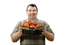 Stock Photo of happy farmer holding a basket of ripe red apples
