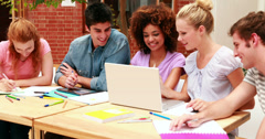 Happy students working together on an assignment - stock footage