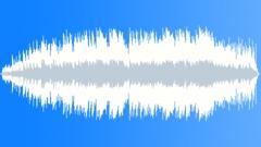 Dream Dolphin (soolokitara) Arkistomusiikki