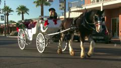 Horse Drawn Carriage Tour in Scottsdale Stock Footage