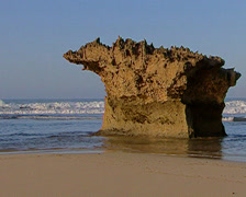 Rocks on Port Alfred beach Stock Footage