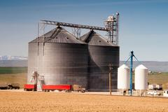 Agricultural silo loads semi truck with farm grown food grain Stock Photos