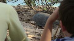 Lapset katsomassa kilpikonna pesiviä Arkistovideo