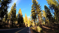 POV road trip State Route 108 Sonora mountain Pass spruce  Wilderness California Stock Footage
