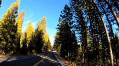 POV road driving Route 108 Sonora mountain Pass spruce California USA Stock Footage