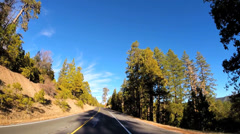 POV driving rural Mountain Pass country road spruce tree Sierra Nevada USA - stock footage