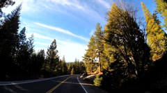 POV road driving Route 108 Sonora mountain Pass spruce California USA - stock footage