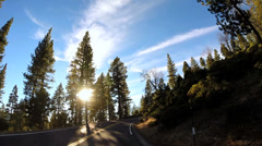 POV driving sun flare high Mountain Pass Sonora Pass Sierra Nevada, USA Stock Footage