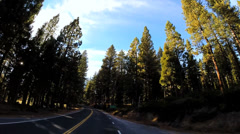 POV road trip sun flare Route 108 Sonora mountain Pass Wilderness Sierra Nevada Stock Footage